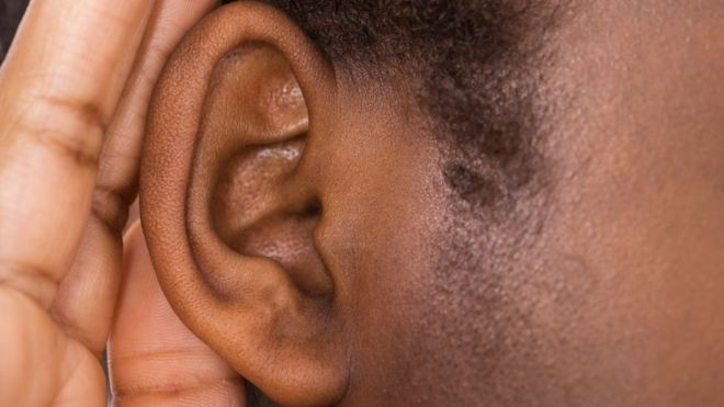 Researchers make progress on gene therapy for hearing loss